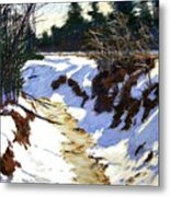Snowy Ditch Metal Print by Mary McInnis