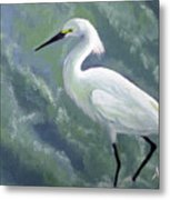 Snowy Egret In Water Metal Print