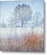 Snowy Field 2 - Winter At Retzer Nature Center  Metal Print