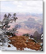 Snowy Frame - Grand Canyon Metal Print