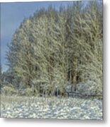 Snowy Landscape #f3 Metal Print