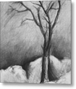 Snowy Moonlight Metal Print