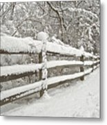 Snowy Morning Metal Print by Michael Peychich