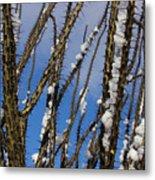 Snowy Ocotillo Sky Metal Print