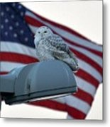 Snowy Owl And Am Flag Metal Print