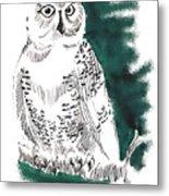 Snowy Owl II Metal Print