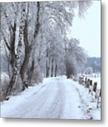 Snowy Path Metal Print
