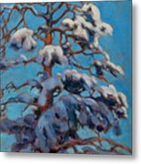 Snowy Pine-tree Metal Print