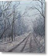 Snowy Road At Dawn  Metal Print