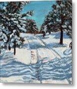 Snowy Road Home Metal Print