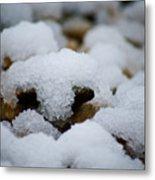 Snowy Stones Metal Print