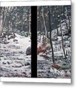 Snowy Stream Metal Print