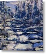 Snowy Trail Metal Print