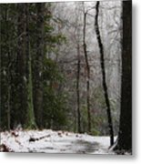 Snowy Trail Quantico National Cemetery Metal Print