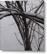 Snowy Tree II Metal Print