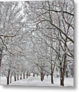 Snowy Treeline Metal Print