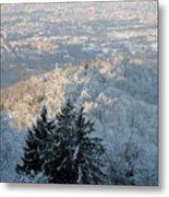 Snowy Turin Metal Print