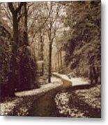 Snowy Woodland Walk One Metal Print