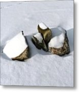 Snowy Zen Metal Print