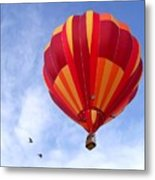 Soaring With The Birds Metal Print