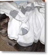 Sock It To Me Metal Print