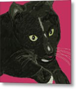 Socks Portrait Metal Print