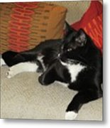 Socks The Cat King Metal Print
