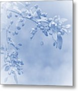 Soft And Gentle Metal Print