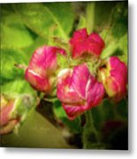 Soft And Soothing 2 Metal Print