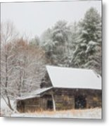 Soft Colors In The Snow Metal Print