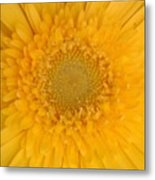 Soft Explosion Metal Print