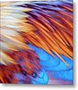 Soft Feather Palette Metal Print