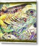Soft Iguana Metal Print