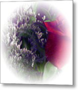 Soft Light Rose Metal Print
