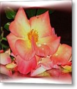 Soft Pink Rose Metal Print