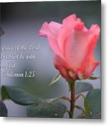 Soft Pink Rose With Scripture Metal Print