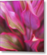 Soft Red Ti Metal Print