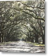 Soft Southern Day Metal Print