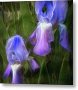 Softly Growing In The Garden Metal Print