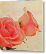 Softly Peach Metal Print