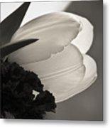 Lit Tulip Metal Print