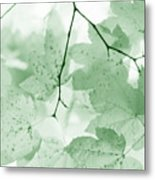 Softness Of Green Leaves Metal Print