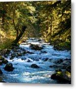 Sol Duc River Above The Falls - Washington Metal Print