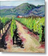 Solano Vineyards Metal Print