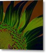 Solar Sunflower Metal Print