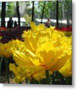 Solar Tulip Metal Print
