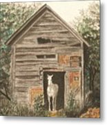 Solitaire Near Enterprise.  Solitary Horse Looking Out From Barn Door Metal Print by Lynn ACourt