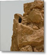 Solitary Bird At Masada Metal Print