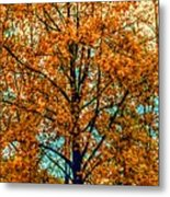 Solitary Fall Metal Print