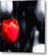 Solitary In Red Metal Print